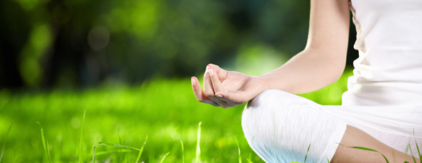 chiropractic care for wellness